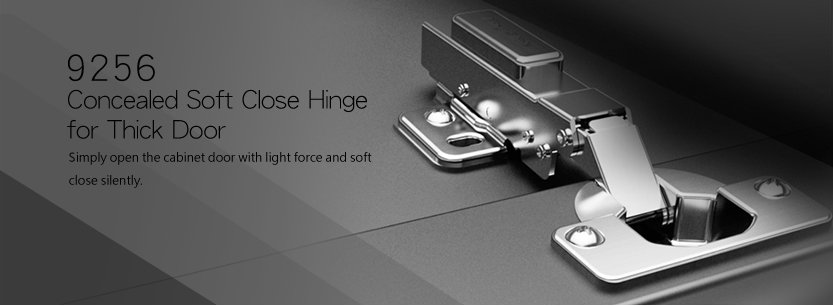 9256 Concealed Soft Close Hinge for Thick Door